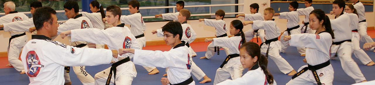 Beginner martial arts trial program